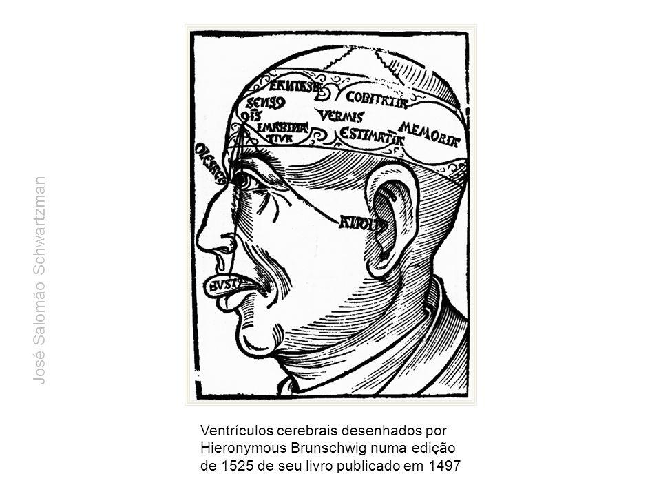 Ventrículos cerebrais desenhados por Hieronymous Brunschwig numa edição de 1525 de seu livro publicado em 1497 José Salomão Schwartzman