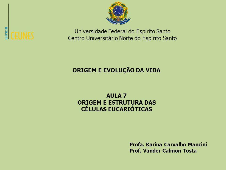 Universidade Federal do Espírito Santo Centro Universitário Norte do Espírito Santo ORIGEM E EVOLUÇÃO DA VIDA AULA 7 ORIGEM E ESTRUTURA DAS CÉLULAS EU
