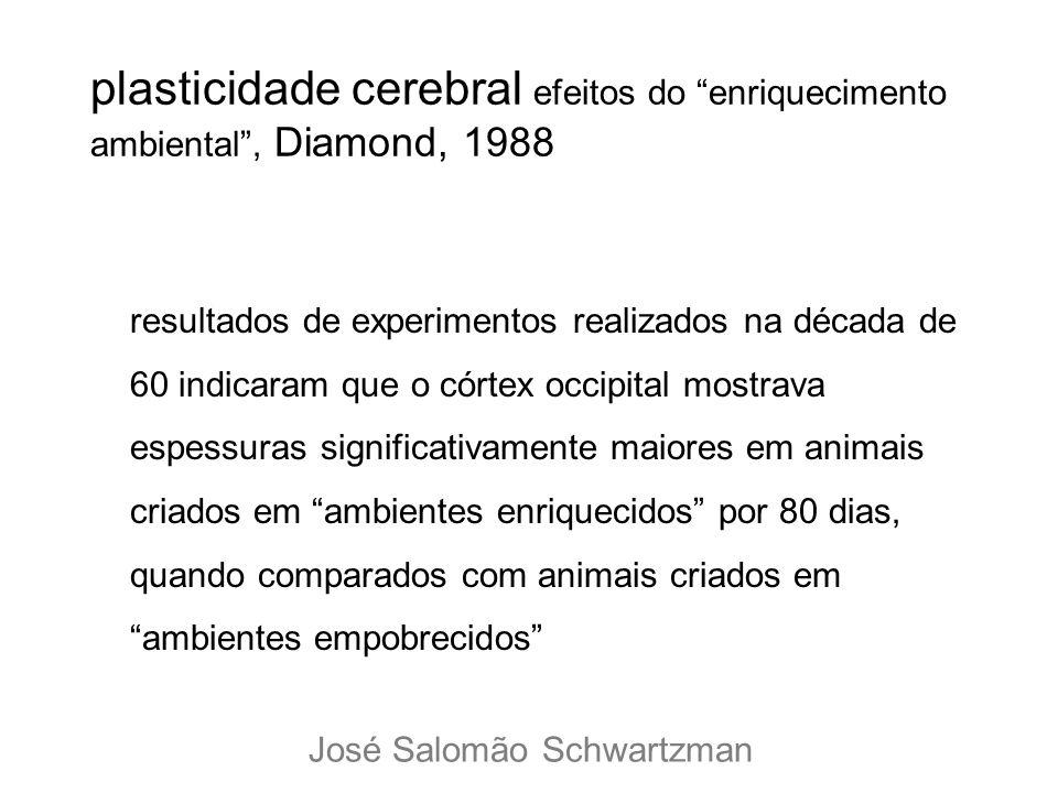 plasticidade cerebral efeitos do enriquecimento ambiental, Diamond, 1988 resultados de experimentos realizados na década de 60 indicaram que o córtex