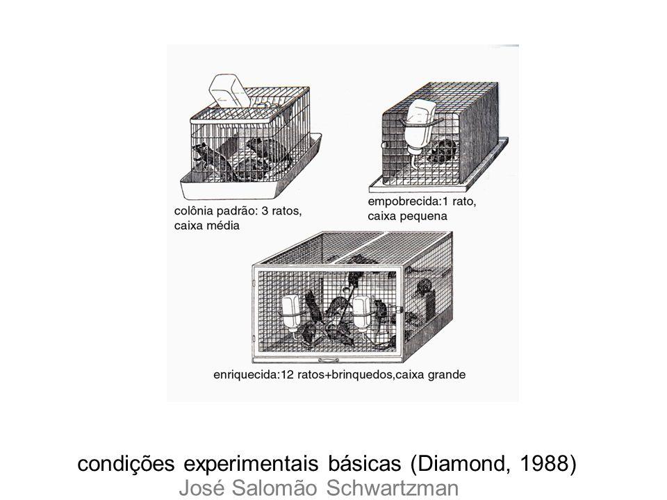 condições experimentais básicas (Diamond, 1988) José Salomão Schwartzman