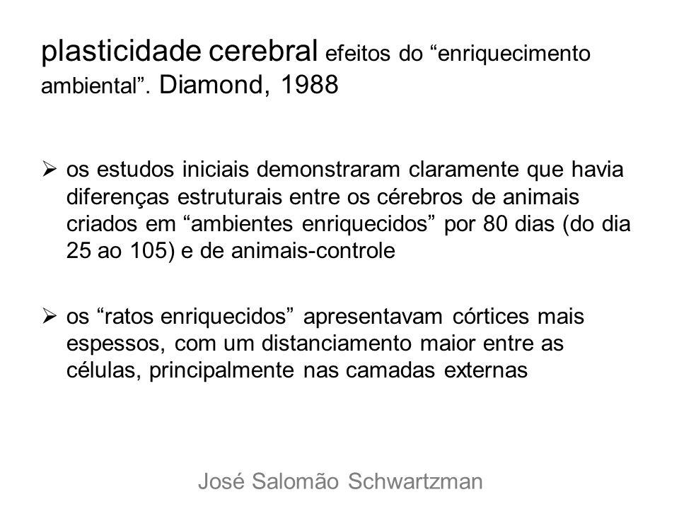 plasticidade cerebral efeitos do enriquecimento ambiental. Diamond, 1988 os estudos iniciais demonstraram claramente que havia diferenças estruturais