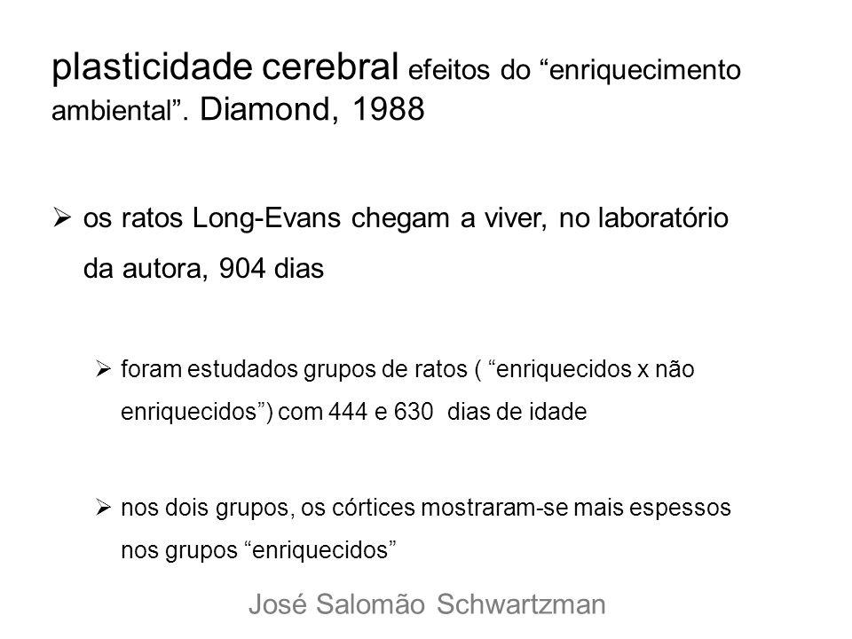 plasticidade cerebral efeitos do enriquecimento ambiental. Diamond, 1988 os ratos Long-Evans chegam a viver, no laboratório da autora, 904 dias foram