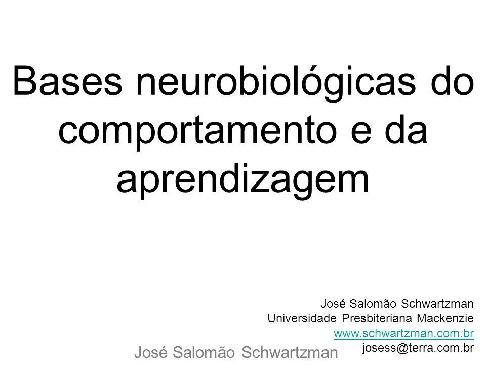 Bases neurobiológicas do comportamento e da aprendizagem José Salomão Schwartzman Universidade Presbiteriana Mackenzie Universiwww.schwartzman.com.brw