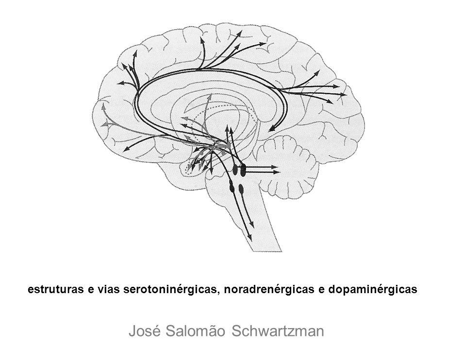 estruturas e vias serotoninérgicas, noradrenérgicas e dopaminérgicas José Salomão Schwartzman