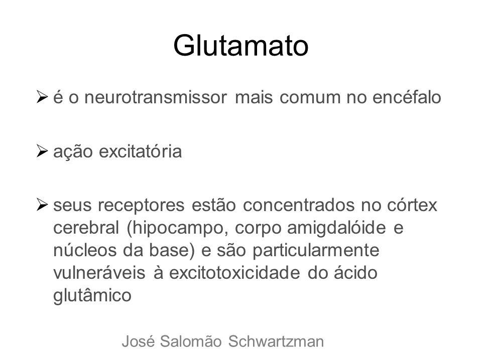 Glutamato é o neurotransmissor mais comum no encéfalo ação excitatória seus receptores estão concentrados no córtex cerebral (hipocampo, corpo amigdal