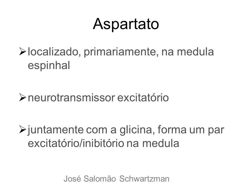Aspartato localizado, primariamente, na medula espinhal neurotransmissor excitatório juntamente com a glicina, forma um par excitatório/inibitório na
