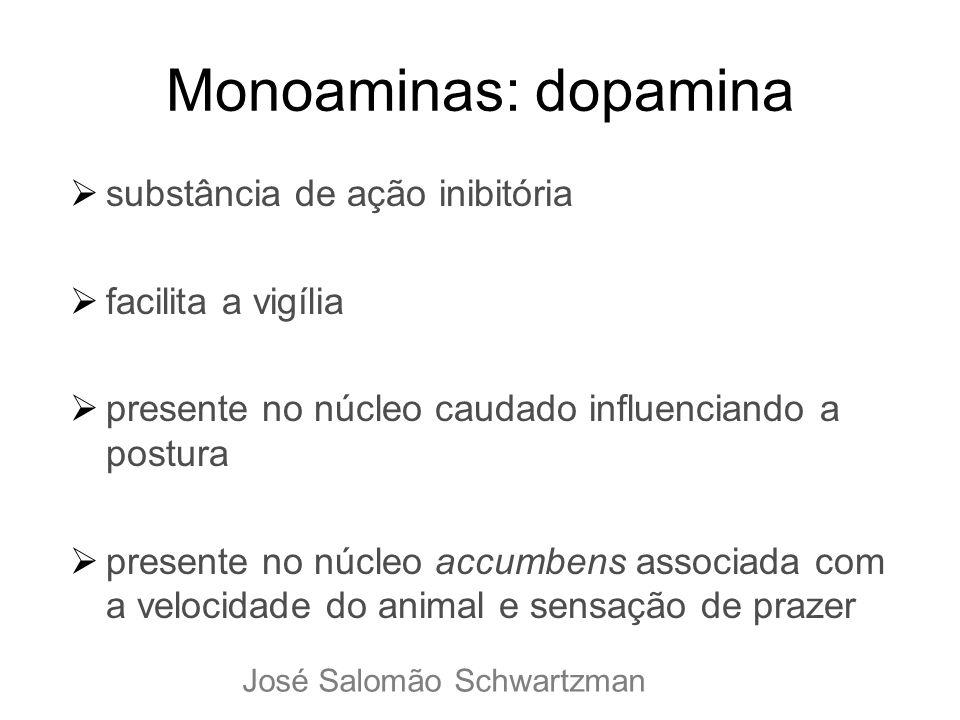Monoaminas: dopamina substância de ação inibitória facilita a vigília presente no núcleo caudado influenciando a postura presente no núcleo accumbens