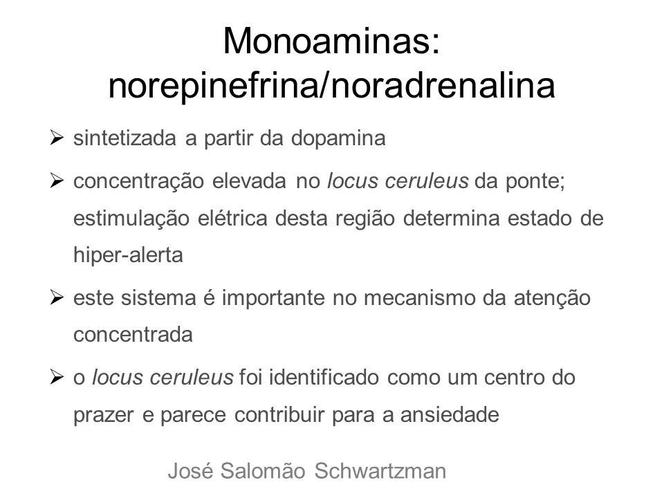 Monoaminas: norepinefrina/noradrenalina sintetizada a partir da dopamina concentração elevada no locus ceruleus da ponte; estimulação elétrica desta r