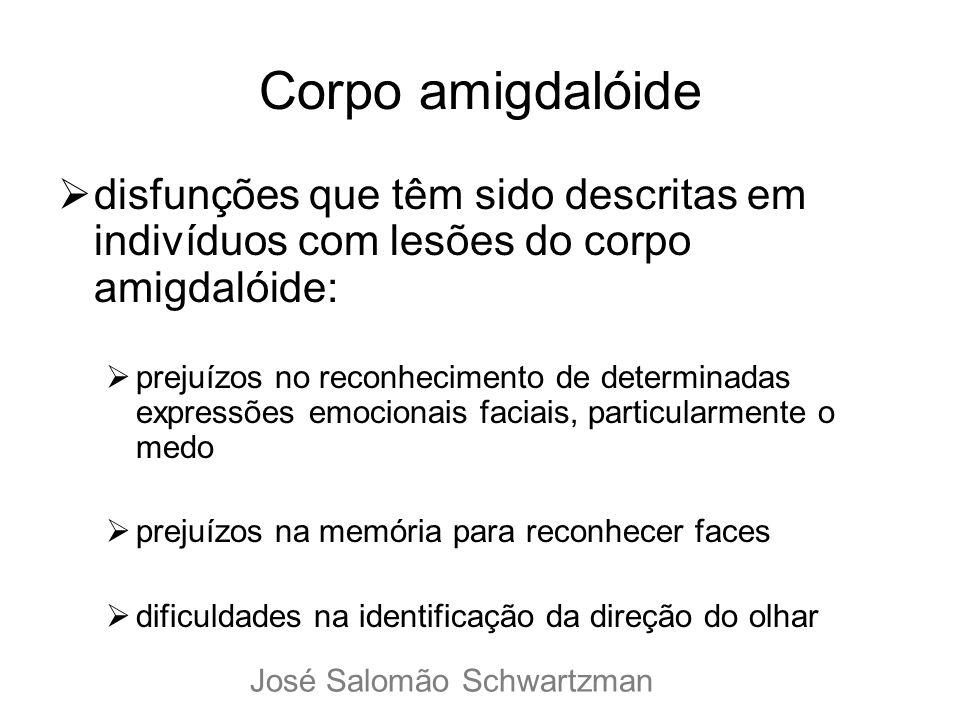 Corpo amigdalóide disfunções que têm sido descritas em indivíduos com lesões do corpo amigdalóide: prejuízos no reconhecimento de determinadas express