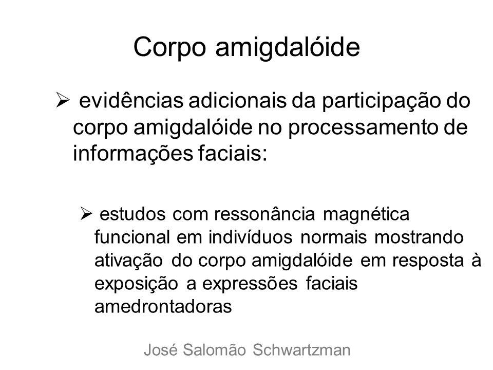 Corpo amigdalóide evidências adicionais da participação do corpo amigdalóide no processamento de informações faciais: estudos com ressonância magnétic