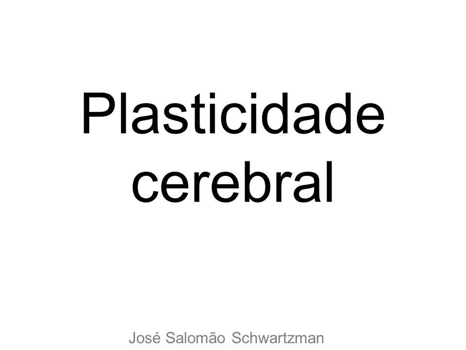 Plasticidade cerebral José Salomão Schwartzman