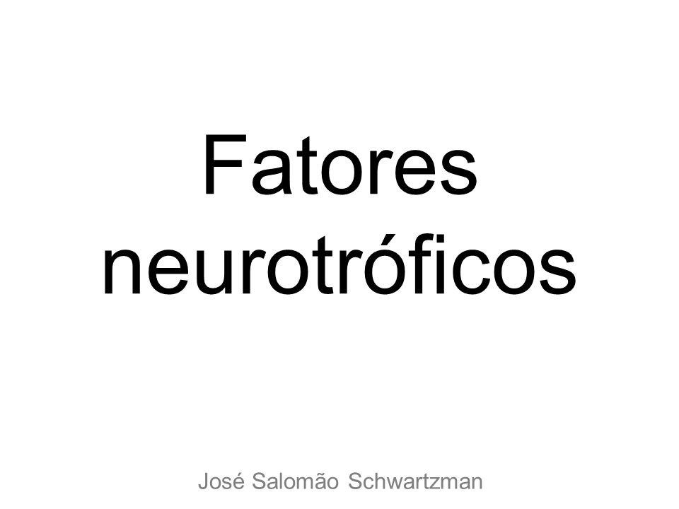 Fatores neurotróficos José Salomão Schwartzman