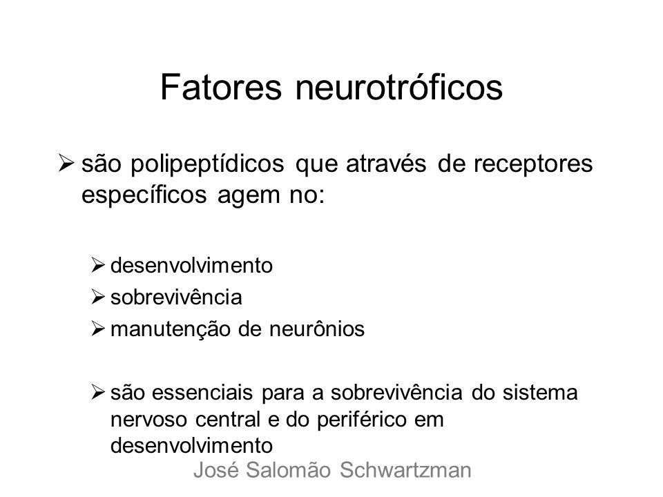 Fatores neurotróficos são polipeptídicos que através de receptores específicos agem no: desenvolvimento sobrevivência manutenção de neurônios são esse