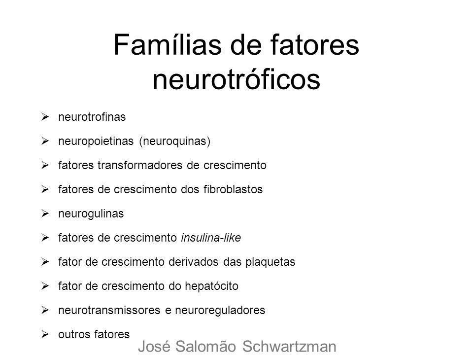 Famílias de fatores neurotróficos neurotrofinas neuropoietinas (neuroquinas) fatores transformadores de crescimento fatores de crescimento dos fibrobl