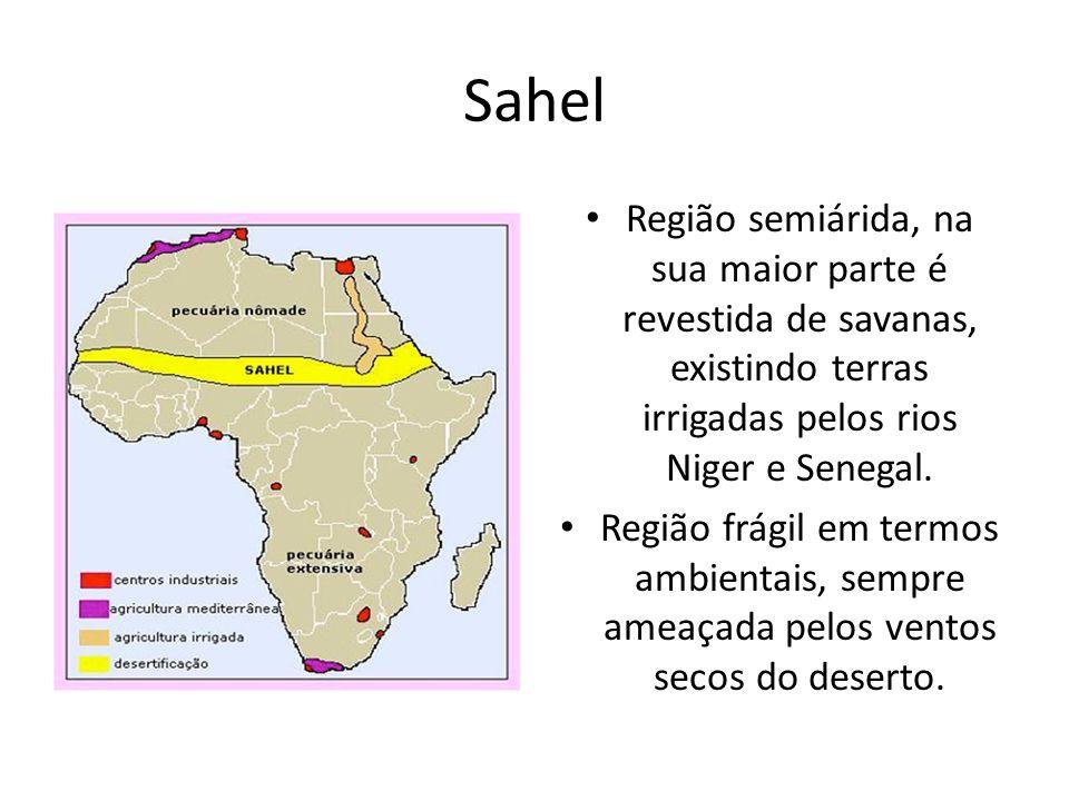 Sahel Região semiárida, na sua maior parte é revestida de savanas, existindo terras irrigadas pelos rios Niger e Senegal. Região frágil em termos ambi