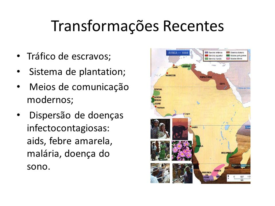 Transformações Recentes Tráfico de escravos; Sistema de plantation; Meios de comunicação modernos; Dispersão de doenças infectocontagiosas: aids, febr