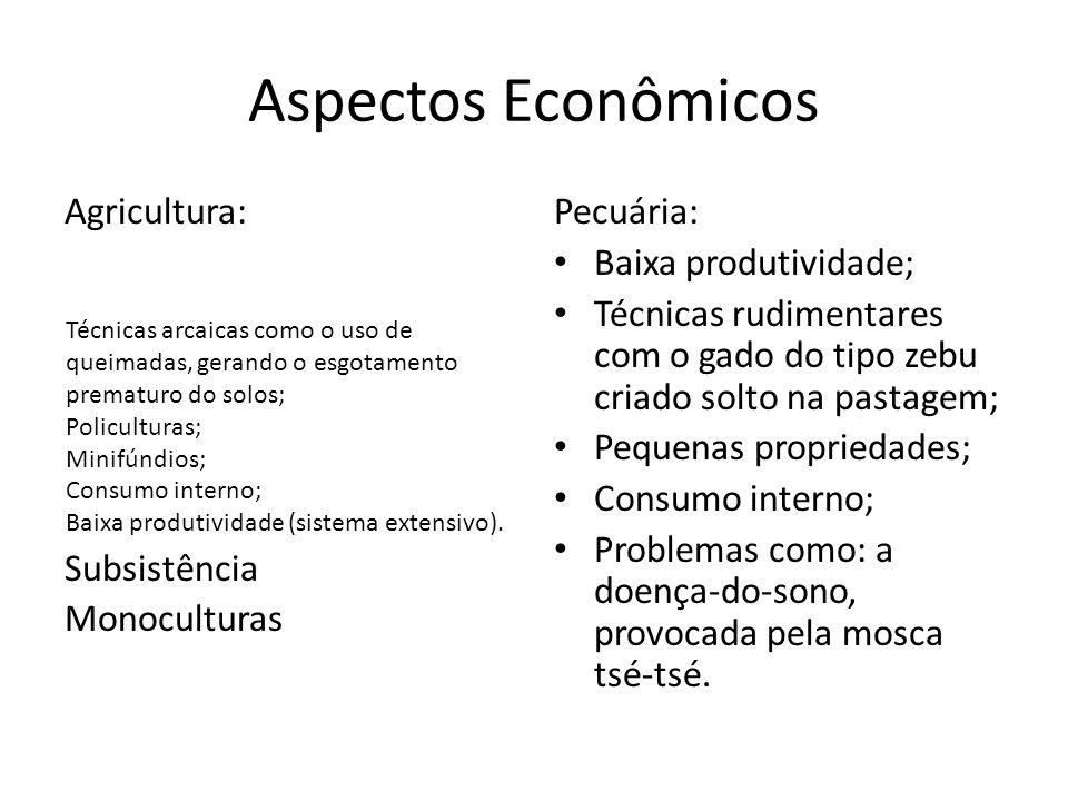 Aspectos Econômicos Agricultura: Subsistência Monoculturas Pecuária: Baixa produtividade; Técnicas rudimentares com o gado do tipo zebu criado solto n