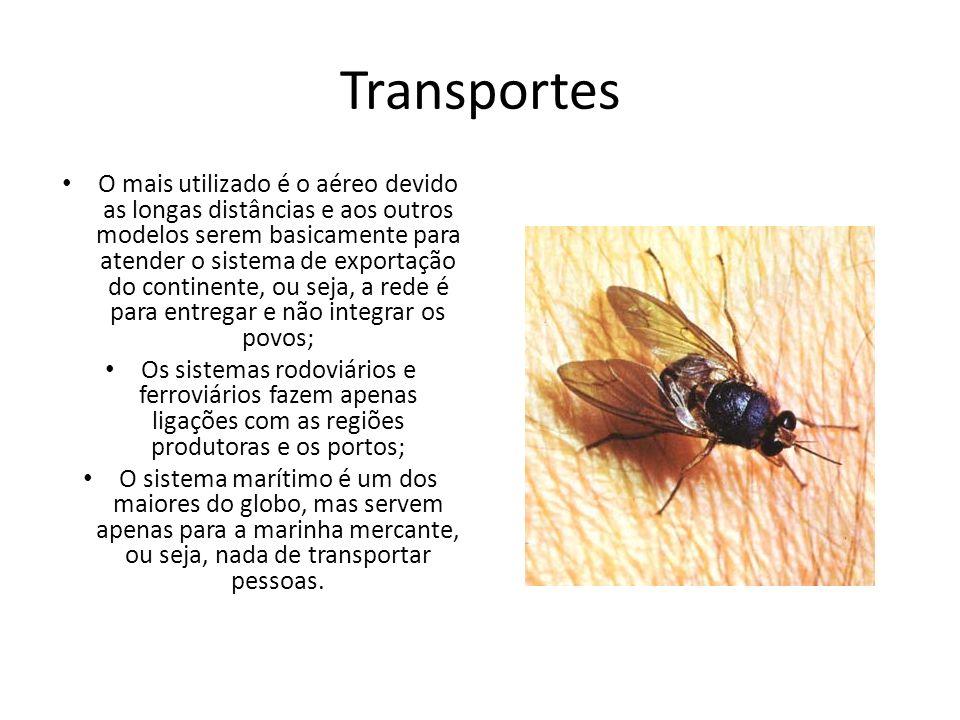Transportes O mais utilizado é o aéreo devido as longas distâncias e aos outros modelos serem basicamente para atender o sistema de exportação do cont