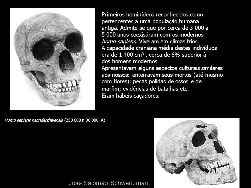 Homo sapiens neanderthalensis (250 000 a 30 000 A) Primeiros hominídeos reconhecidos como pertencentes a uma população humana antiga. Admite-se que po