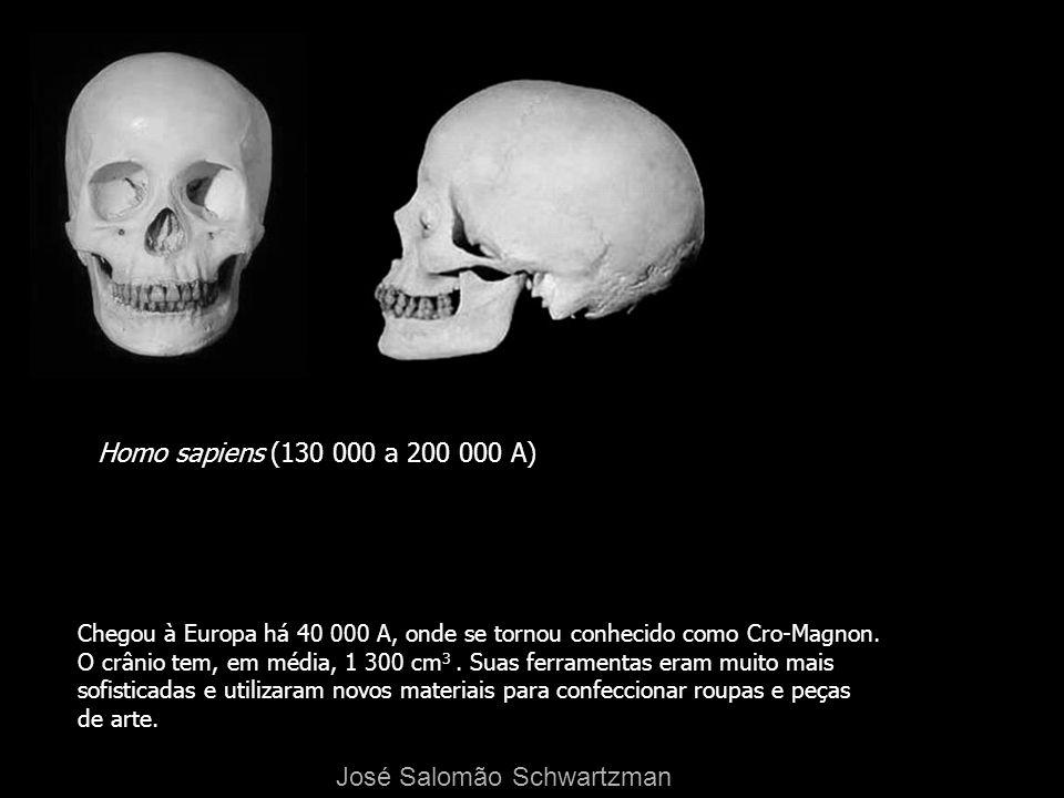 Homo sapiens (130 000 a 200 000 A) Chegou à Europa há 40 000 A, onde se tornou conhecido como Cro-Magnon. O crânio tem, em média, 1 300 cm 3. Suas fer