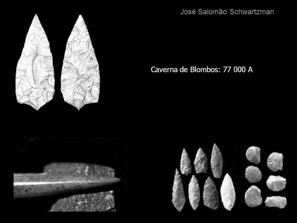 Caverna de Blombos: 77 000 A José Salomão Schwartzman