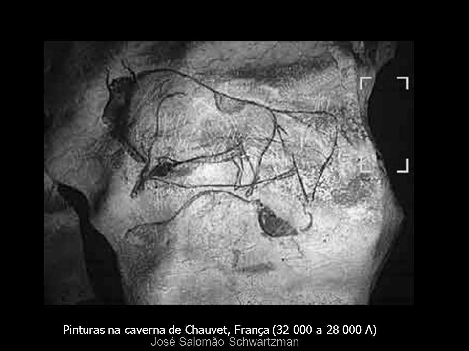 Pinturas na caverna de Chauvet, França (32 000 a 28 000 A) José Salomão Schwartzman