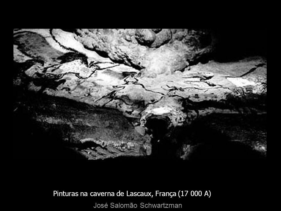 Pinturas na caverna de Lascaux, França (17 000 A) José Salomão Schwartzman