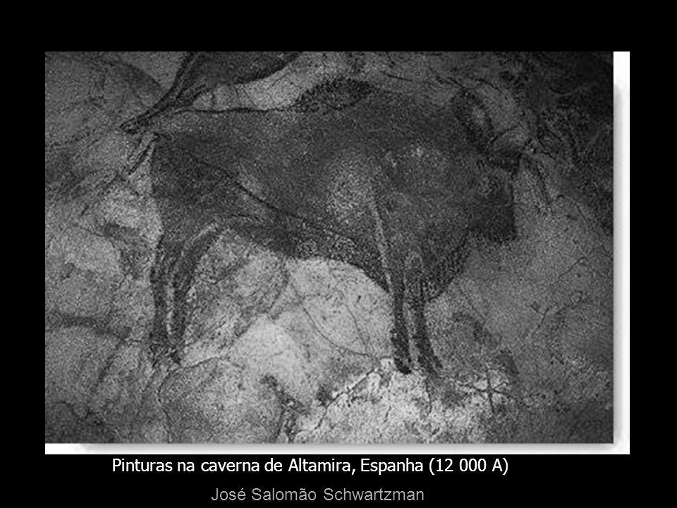 Pinturas na caverna de Altamira, Espanha (12 000 A) José Salomão Schwartzman