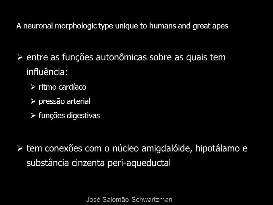 A neuronal morphologic type unique to humans and great apes entre as funções autonômicas sobre as quais tem influência: ritmo cardíaco pressão arteria