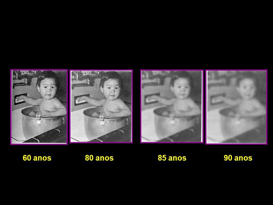 60 anos80 anos85 anos90 anos