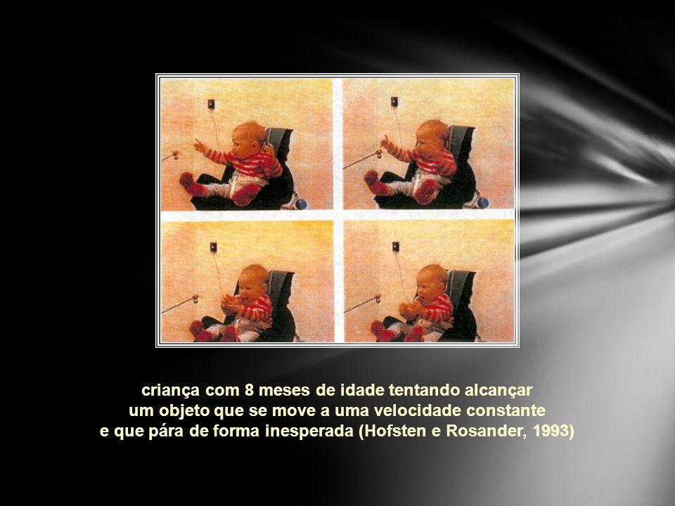 criança com 8 meses de idade tentando alcançar um objeto que se move a uma velocidade constante e que pára de forma inesperada (Hofsten e Rosander, 1993)