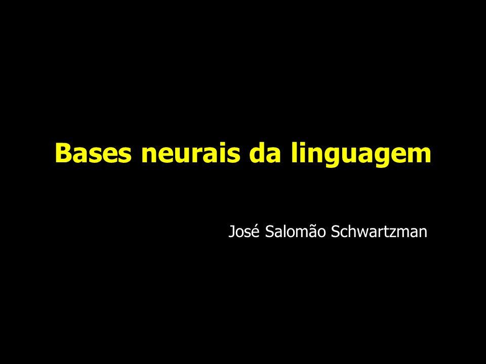 Bases neurológicas da linguagem Lennenberg, 1967 o cérebro de um recém-nato pesa aproximadamente 300-400 gm já demonstra as 6 camadas corticais as assimetrias anatômicas já estão presentes o planum temporale é maior à esquerda ( na maioria dos bebês) à partir da 29 a semana gestacional