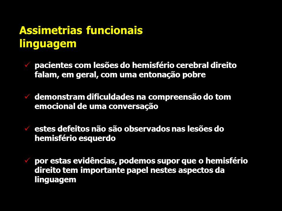 Assimetrias funcionais linguagem os processos semânticos são severamente comprometidos nas lesões que atingem as regiões posteriores do hemisfério cer