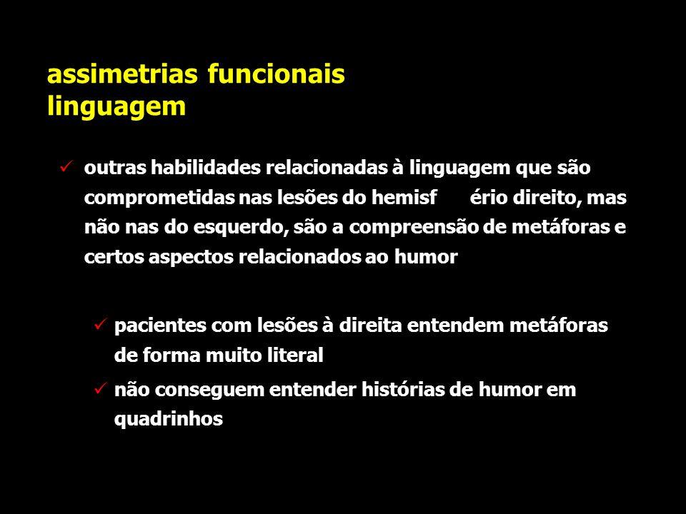Assimetrias funcionais linguagem pacientes com lesões do hemisfério cerebral direito falam, em geral, com uma entonação pobre demonstram dificuldades