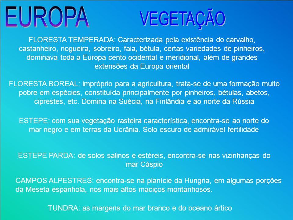 FLORESTA TEMPERADA: Caracterizada pela existência do carvalho, castanheiro, nogueira, sobreiro, faia, bétula, certas variedades de pinheiros, dominava