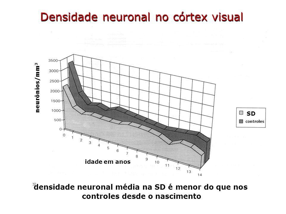 idade em anos neurônios/mm 3 SD controles Densidade neuronal no córtex visual densidade neuronal média na SD é menor do que nos controles desde o nasc