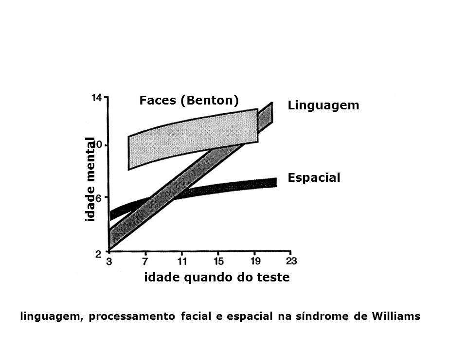 Faces (Benton) Linguagem Espacial idade quando do teste idade mental linguagem, processamento facial e espacial na síndrome de Williams