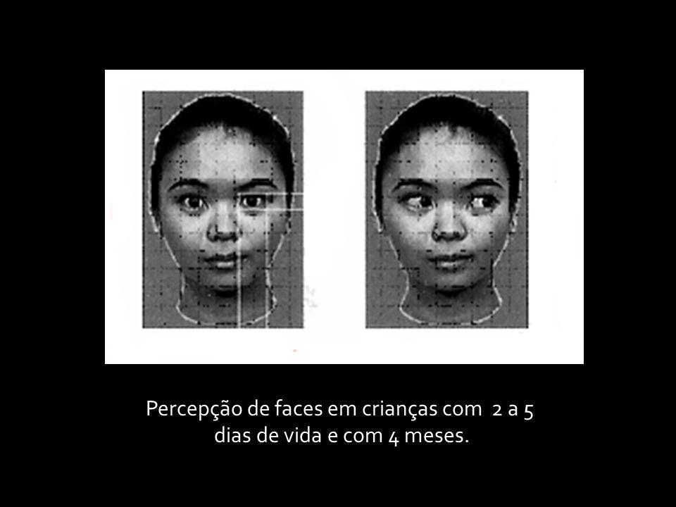 Percepção de faces em crianças com 2 a 5 dias de vida e com 4 meses.