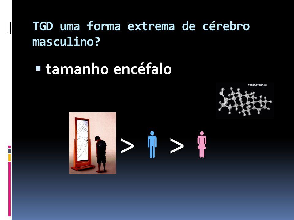 TGD uma forma extrema de cérebro masculino? tamanho encéfalo >