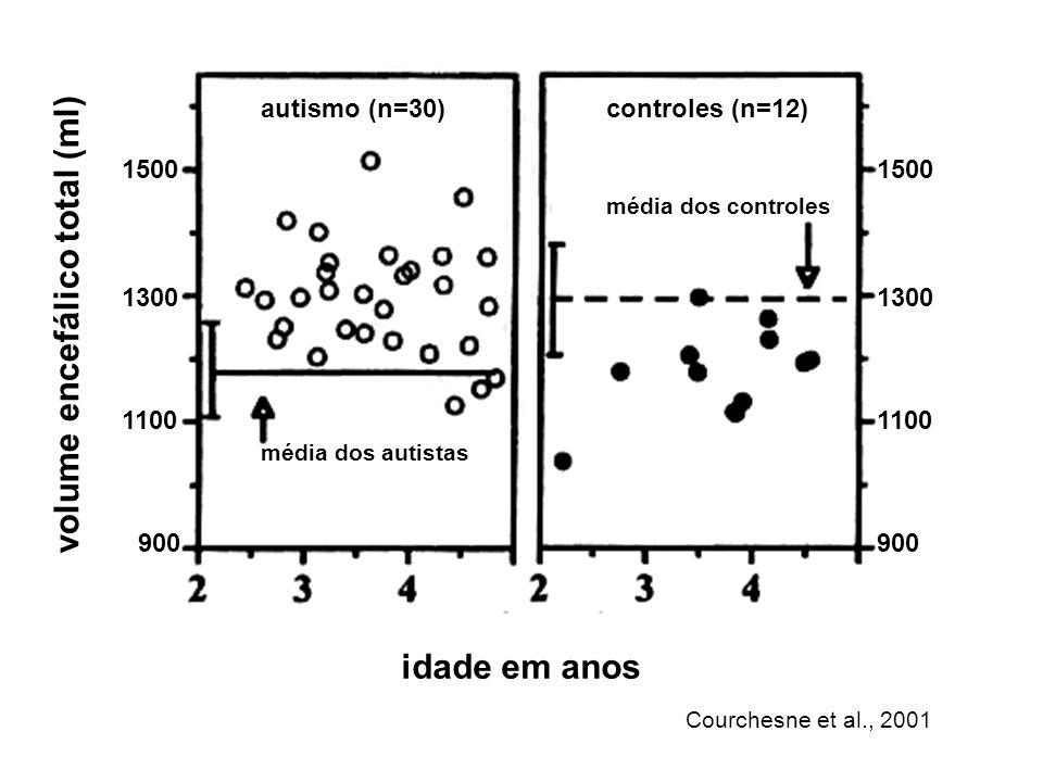Autismo e cerebelo ʘ em 1985, Courchesne descreveu alterações cerebelares como uma característica comum do autismo infantil ʘ Uma década mais tarde, resultados de 16 autópsias e de estudos por ressonância nuclear magnética realizados em nove laboratórios (240 casos) confirmaram a presença de anormalidades cerebelares