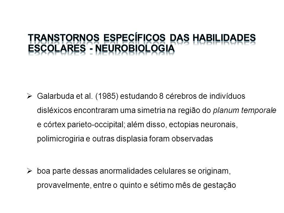 Galarbuda et al. (1985) estudando 8 cérebros de indivíduos disléxicos encontraram uma simetria na região do planum temporale e córtex parieto-occipita