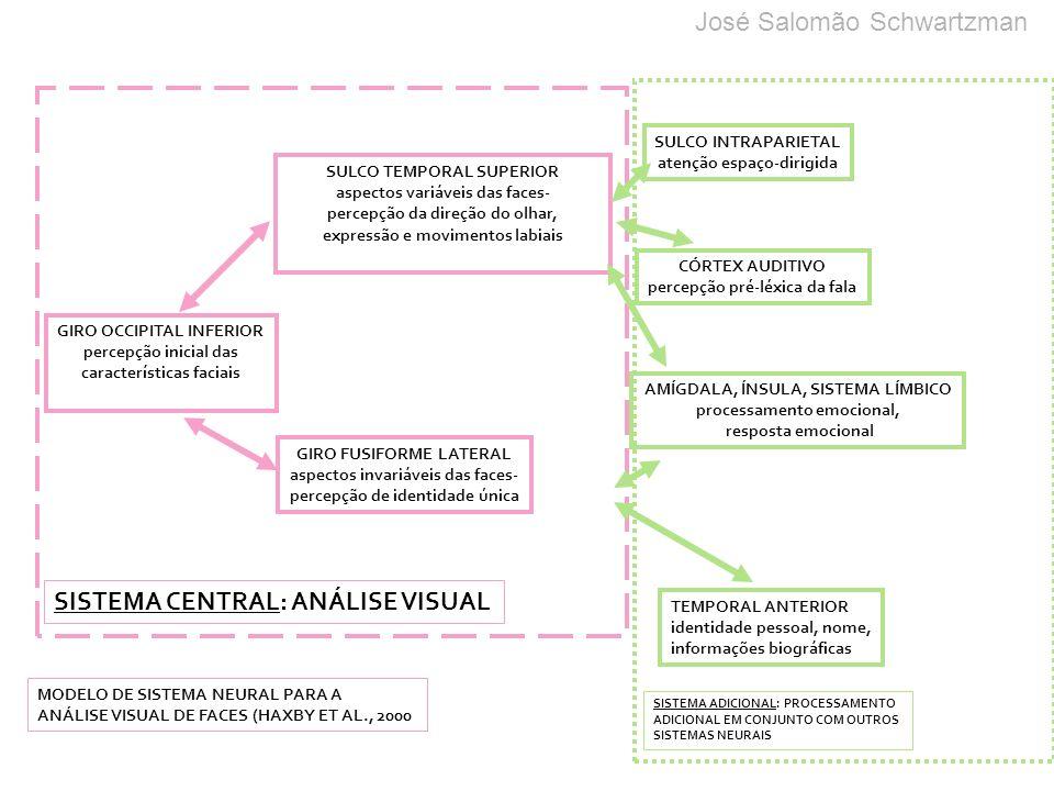 GIRO OCCIPITAL INFERIOR percepção inicial das características faciais SULCO TEMPORAL SUPERIOR aspectos variáveis das faces- percepção da direção do ol