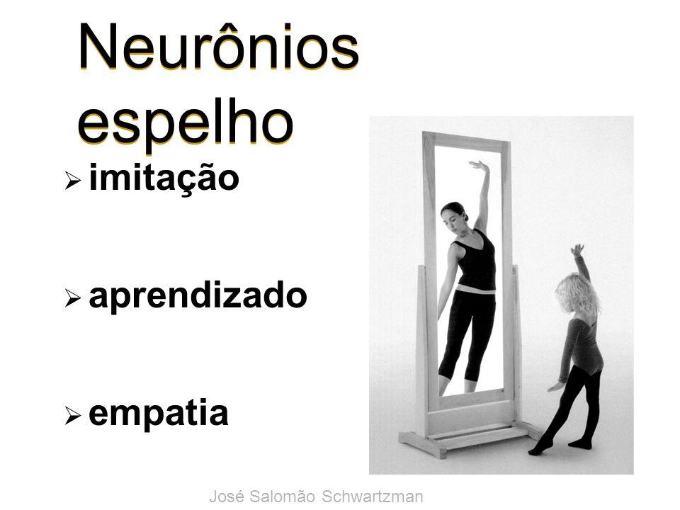 Neurônios espelho imitação aprendizado empatia José Salomão Schwartzman