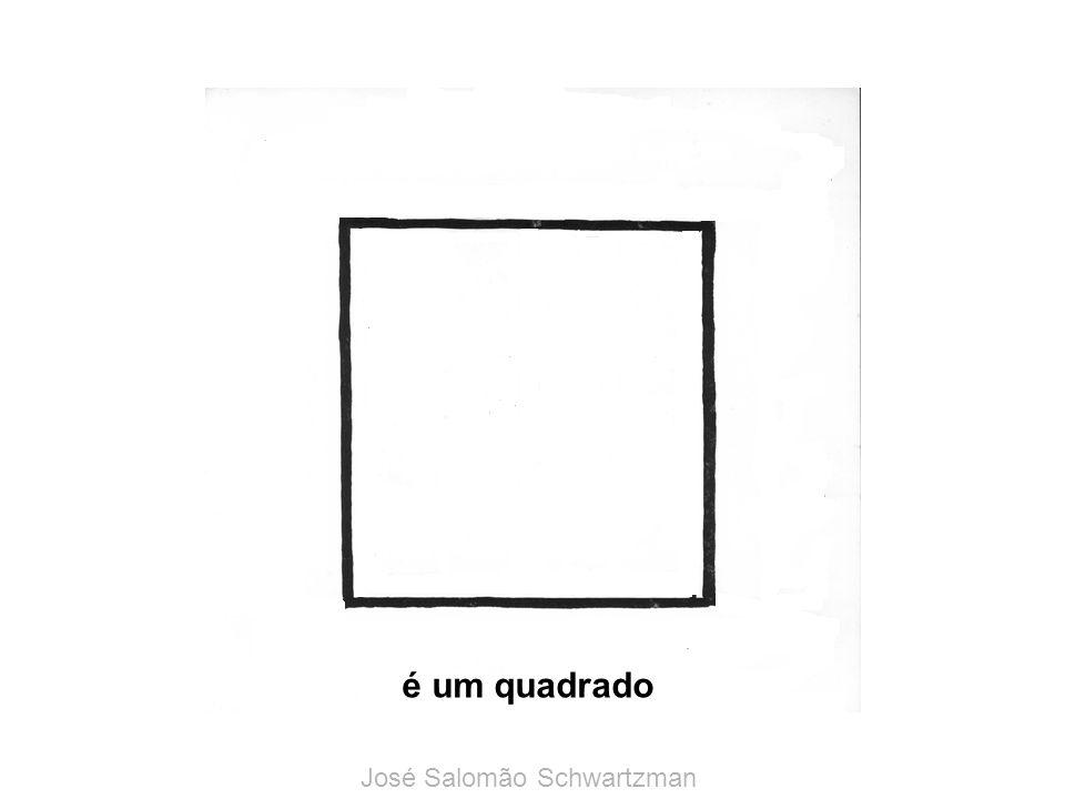 é um quadrado José Salomão Schwartzman
