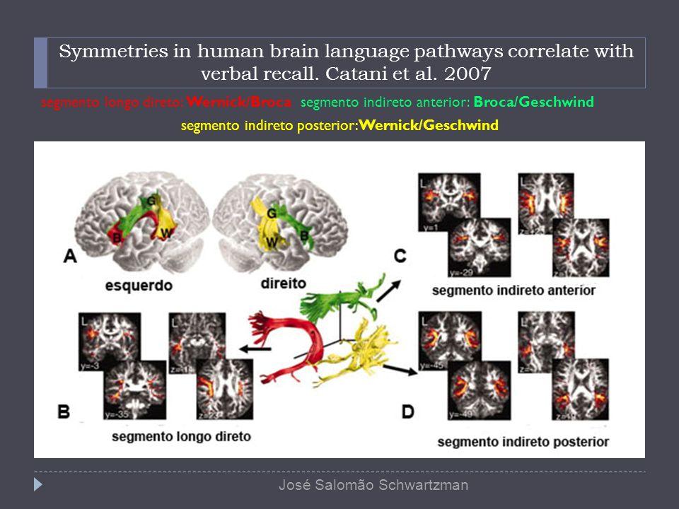 Symmetries in human brain language pathways correlate with verbal recall. Catani et al. 2007 segmento longo direto: Wernick/Broca segmento indireto an