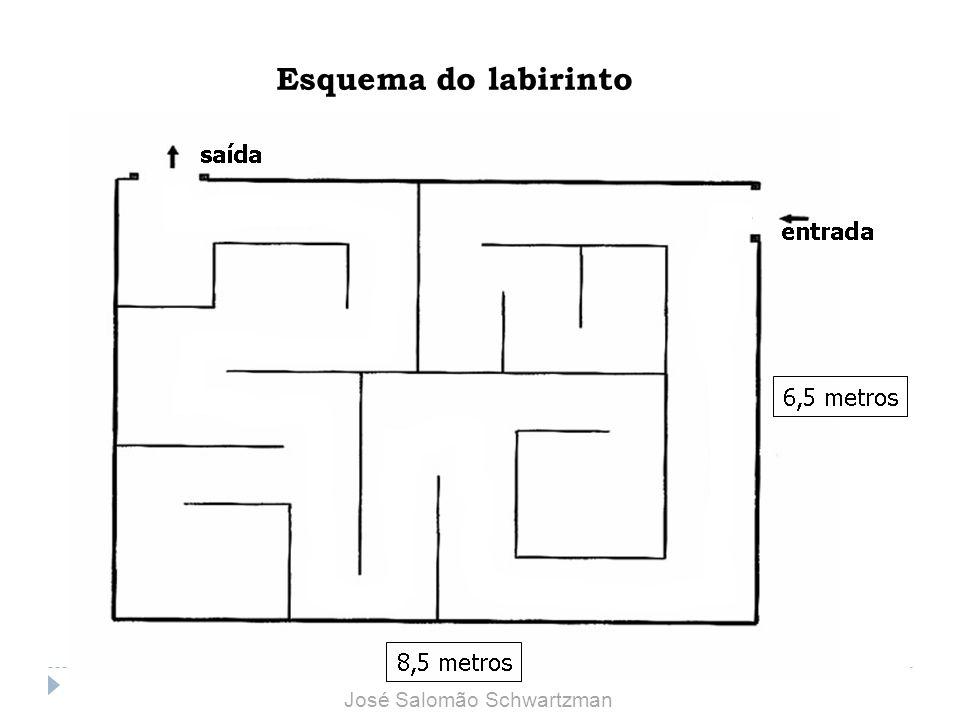 Esquema do labirinto José Salomão Schwartzman