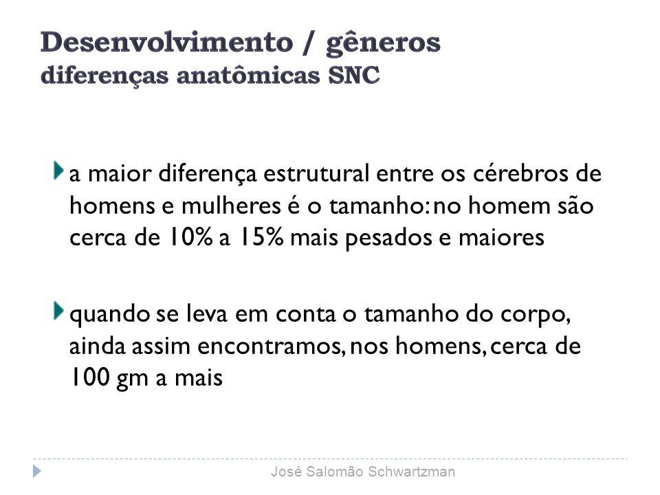 entrada saída 6,5 metros 8,5 metros José Salomão Schwartzman