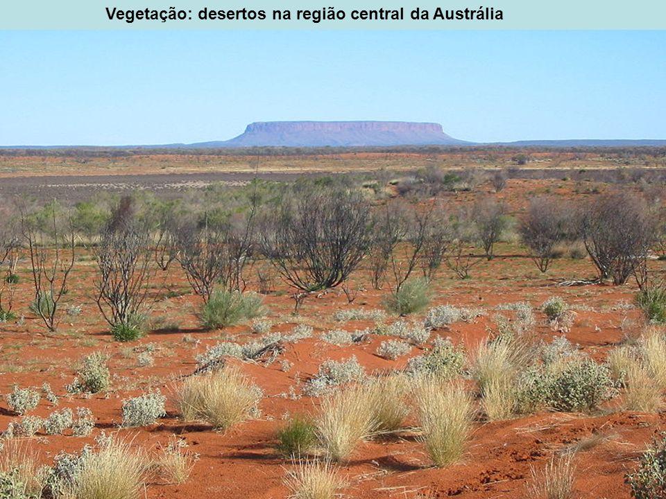Vegetação: desertos na região central da Austrália