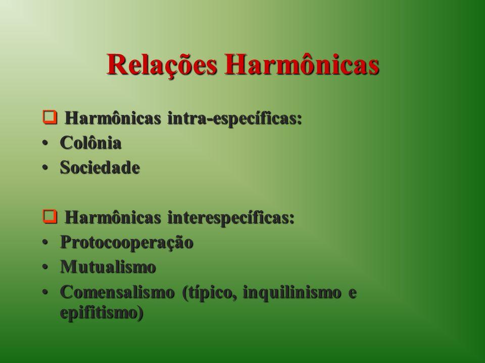 Relações Harmônicas Harmônicas intra-específicas: Harmônicas intra-específicas: ColôniaColônia SociedadeSociedade Harmônicas interespecíficas: Harmônicas interespecíficas: ProtocooperaçãoProtocooperação MutualismoMutualismo Comensalismo (típico, inquilinismo e epifitismo)Comensalismo (típico, inquilinismo e epifitismo)