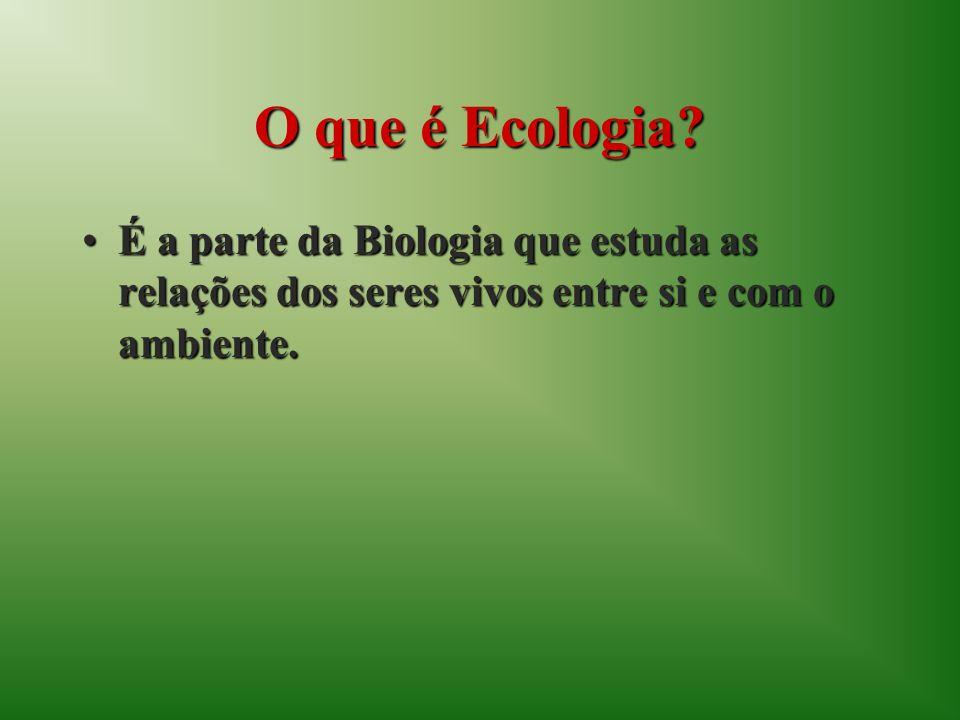 O que é Ecologia? É a parte da Biologia que estuda as relações dos seres vivos entre si e com o ambiente.É a parte da Biologia que estuda as relações